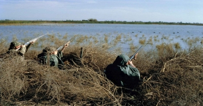 The Best Areas To Hunt For Waterfowl