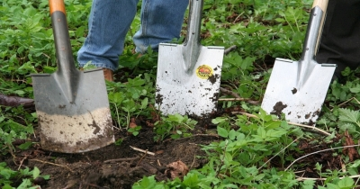 Preparing Healthy Soil