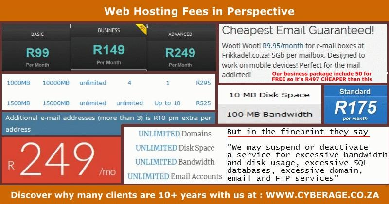 Web Hosting Fees in Perspective